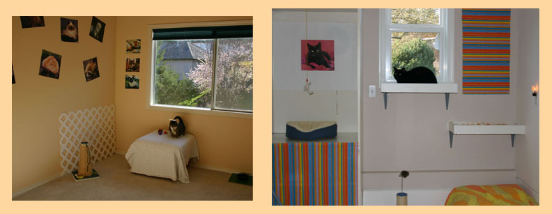 Cat Room, Boarding Pictures